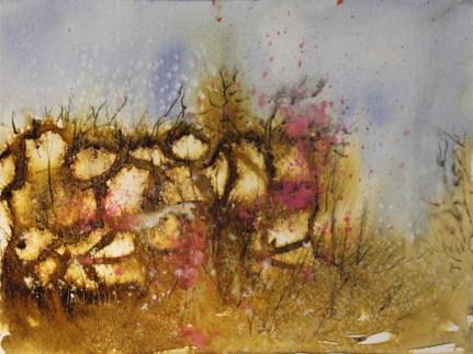 Cornish Hedge I