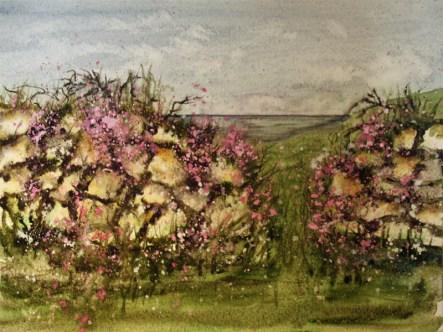 Cornish Hedge III
