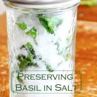 Harvesting and Preserving Basil