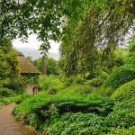 West Dean Gardens, a wonderful day out in West Sussex
