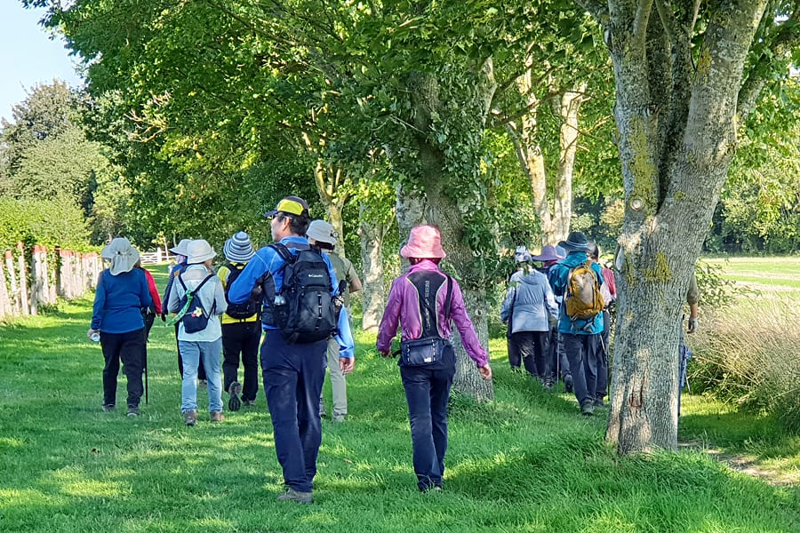 Halnaker walking tour with Sussex Bloggers | Sussex walks | South Downs walks