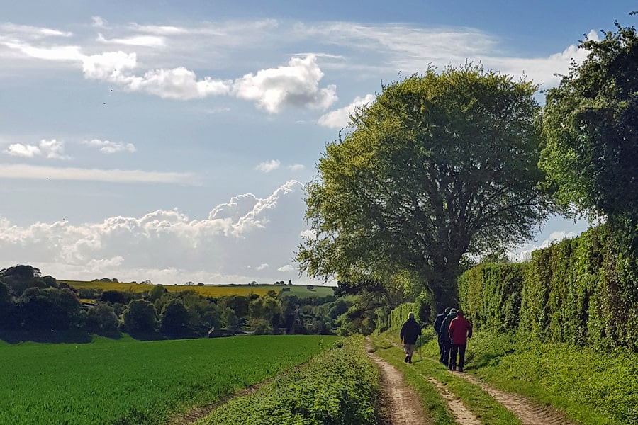 Footpath between Earthem and Nore Wood, West Sussex