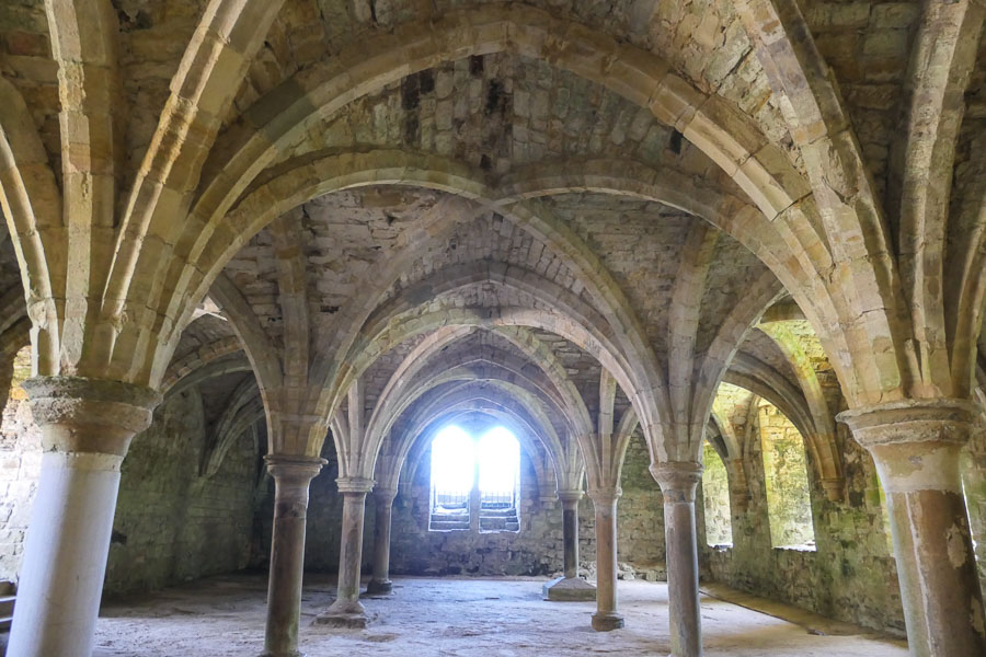 Vaulted Ceilings in novices chamber, Battle Abbey