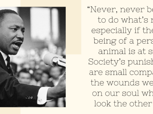 Harry And Meghan Give Back on MLK Day + 20 Quotes From The King