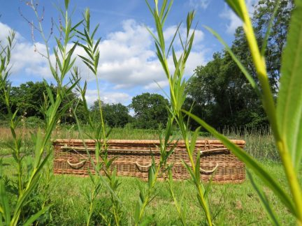 Wicker Coffin from Natural English Willow   Sussex Willow Coffins