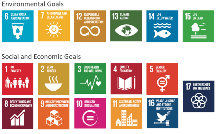 7 Ways Companies Can Contribute To The Sdgs Sustainability Advantage