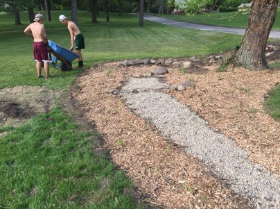 Mulched rain garden with plants installed