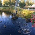 Autumn Umeå, Sweden