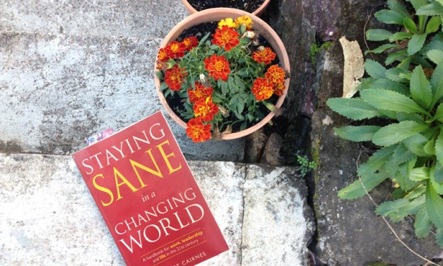 Book Review: A guidebook to sanity