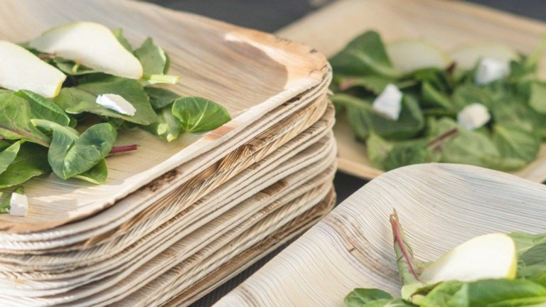 Are Palm Leaf Plates Recyclable or Compostable?
