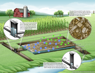 Infographic of how a bioreactor works