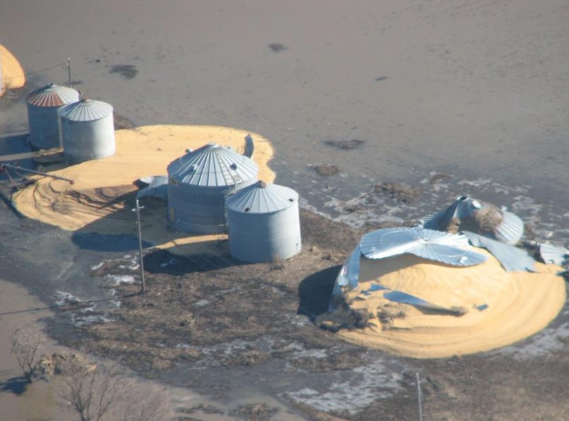silver grain bins surrounded by water - yellow piles of grain show the bins were split during flooding