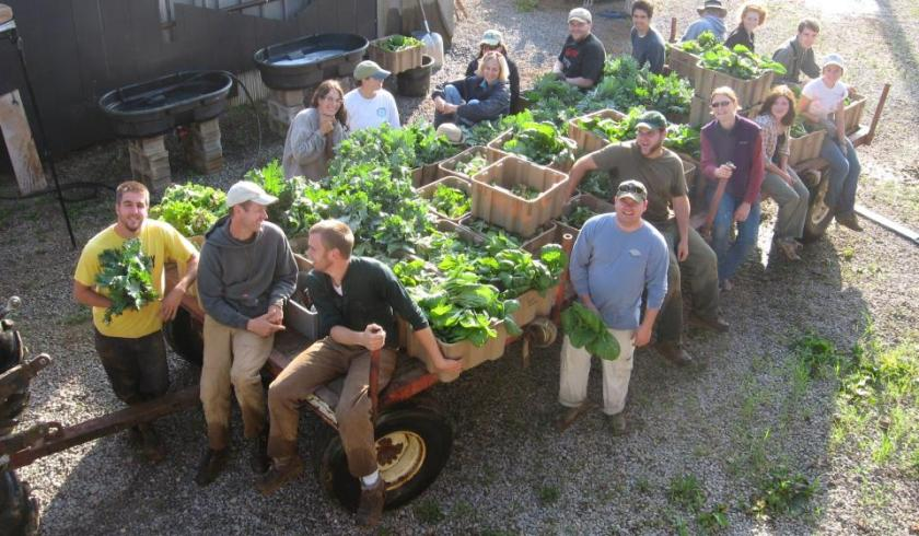 Image result for uky agriculture majors