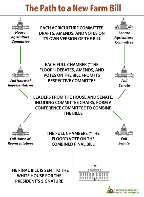 House Senate And Congress Graphic