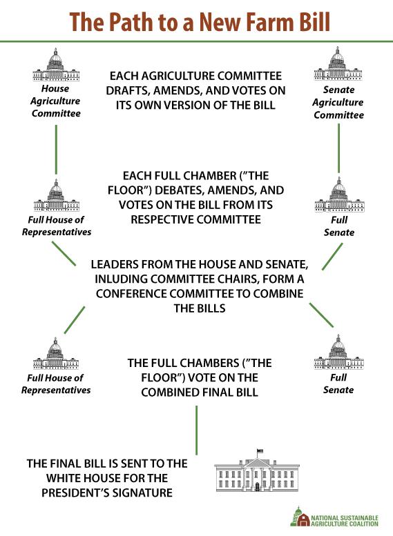 House Senate And Congress Graphic