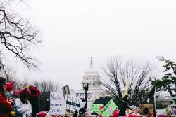 Protestors gather in front of the United States capital.