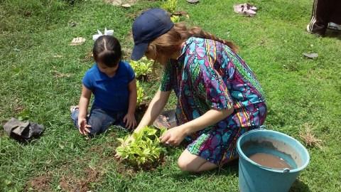 Watering plants with Maya