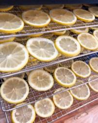 dehydrated lemons