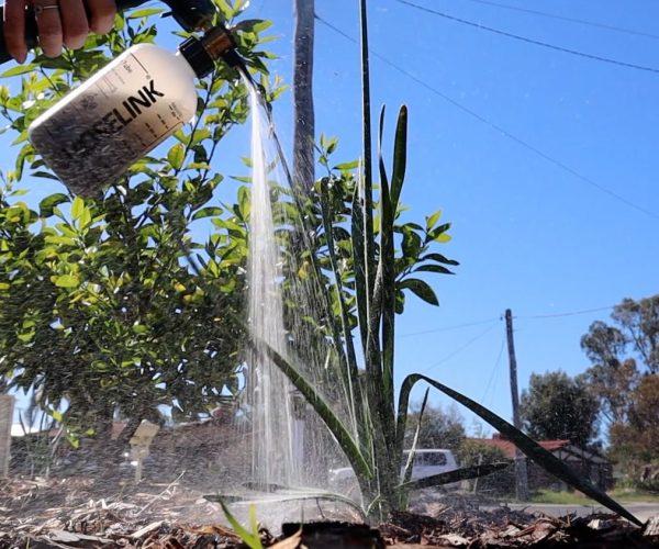 Make your own Weed Tea Fertiliser