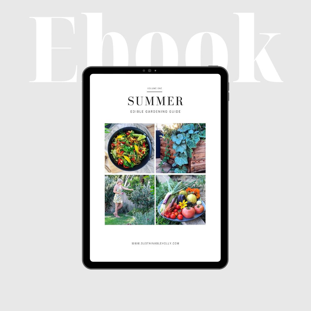summer ebook