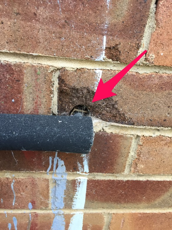 External brick wall showing pipe hole