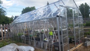 Mills Community Garden greenhouse