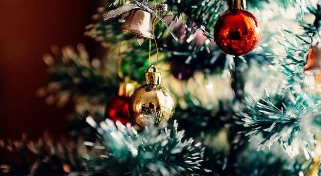 Eco-friendly Christmas tree choices