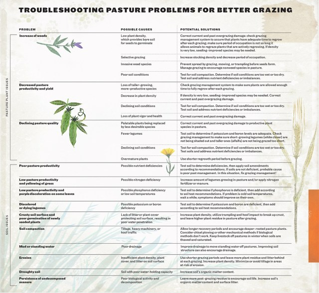 Troubleshooting pasture grazing problems