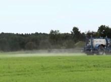 Risks of glyphosate Roundup