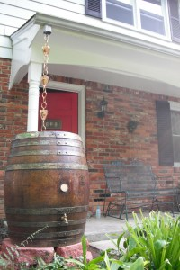 The new rain barrel with a rain chain