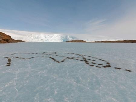 Rhythms of Life / Antarctica