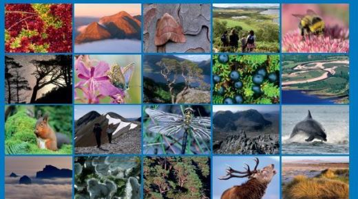 Ecosystems Services and Gaelic Report published