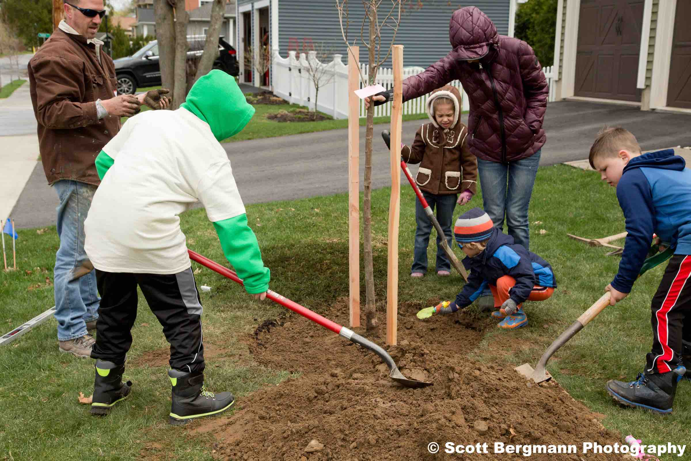 Practical Info For Tree Planting Care Sustainable Saratoga