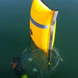 SMELTS: Crab Raft