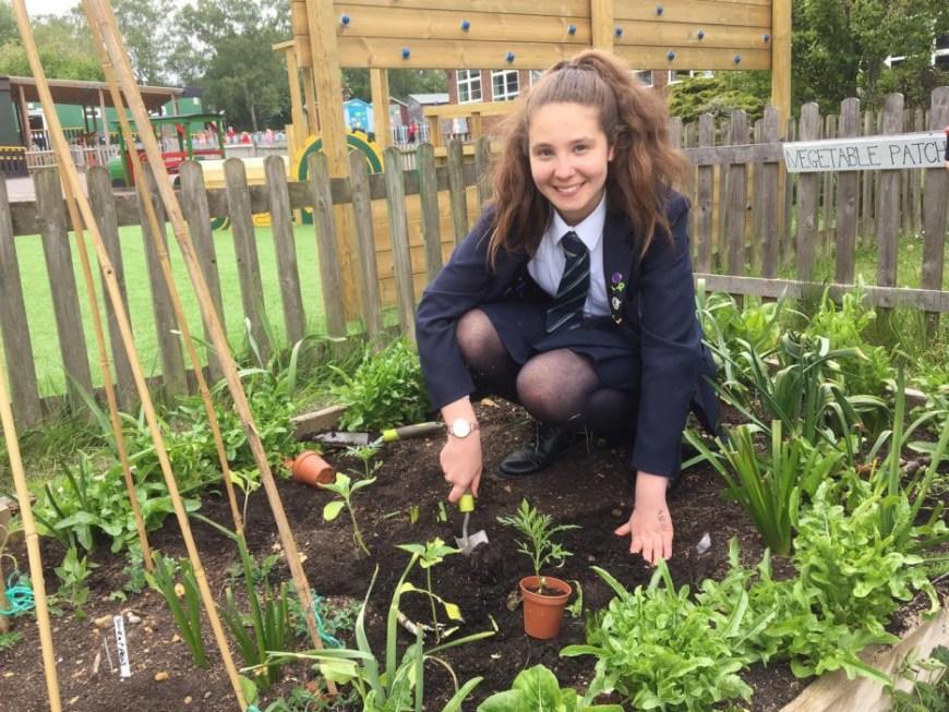 School girl in vegetable garden