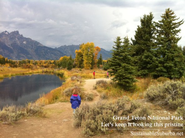 Kids on a trail, looking for beaver dams | Grand Teton National Park | SustainableSuburba.net