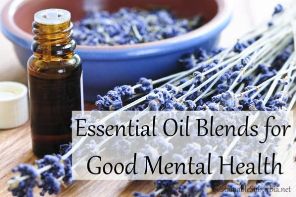 Essential Oil Blends for Good Mental Health | SustainableSuburbia.net