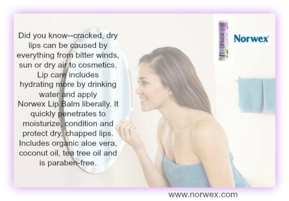 Norwex Lip Balm