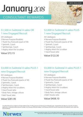 Norwex Consultant Rewards for January 2018, 4 different sales or recruit levels
