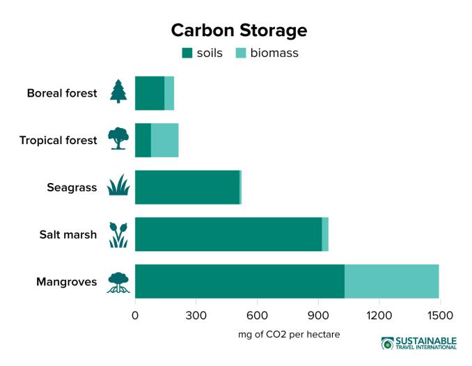 Blue Carbon Ecosystems Carbon Storage Graph