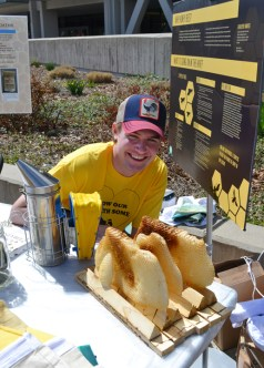Stephen Stanko of the University of Utah Beekeeper's Association, a student group, shows off some combs from their hives around campus at Earth Fest.