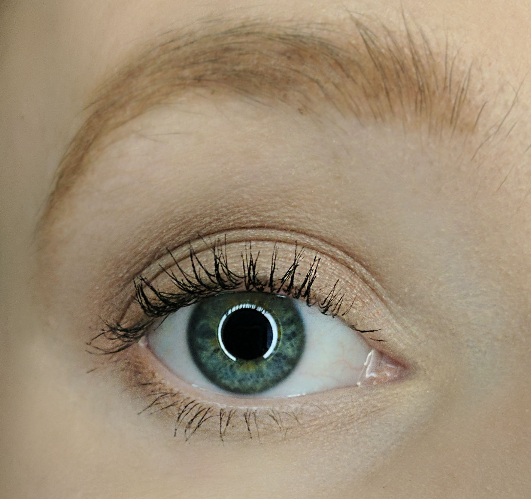 80b40b315a1 Beauty Counter Lengthening Mascara Review   Sustainably Savvy