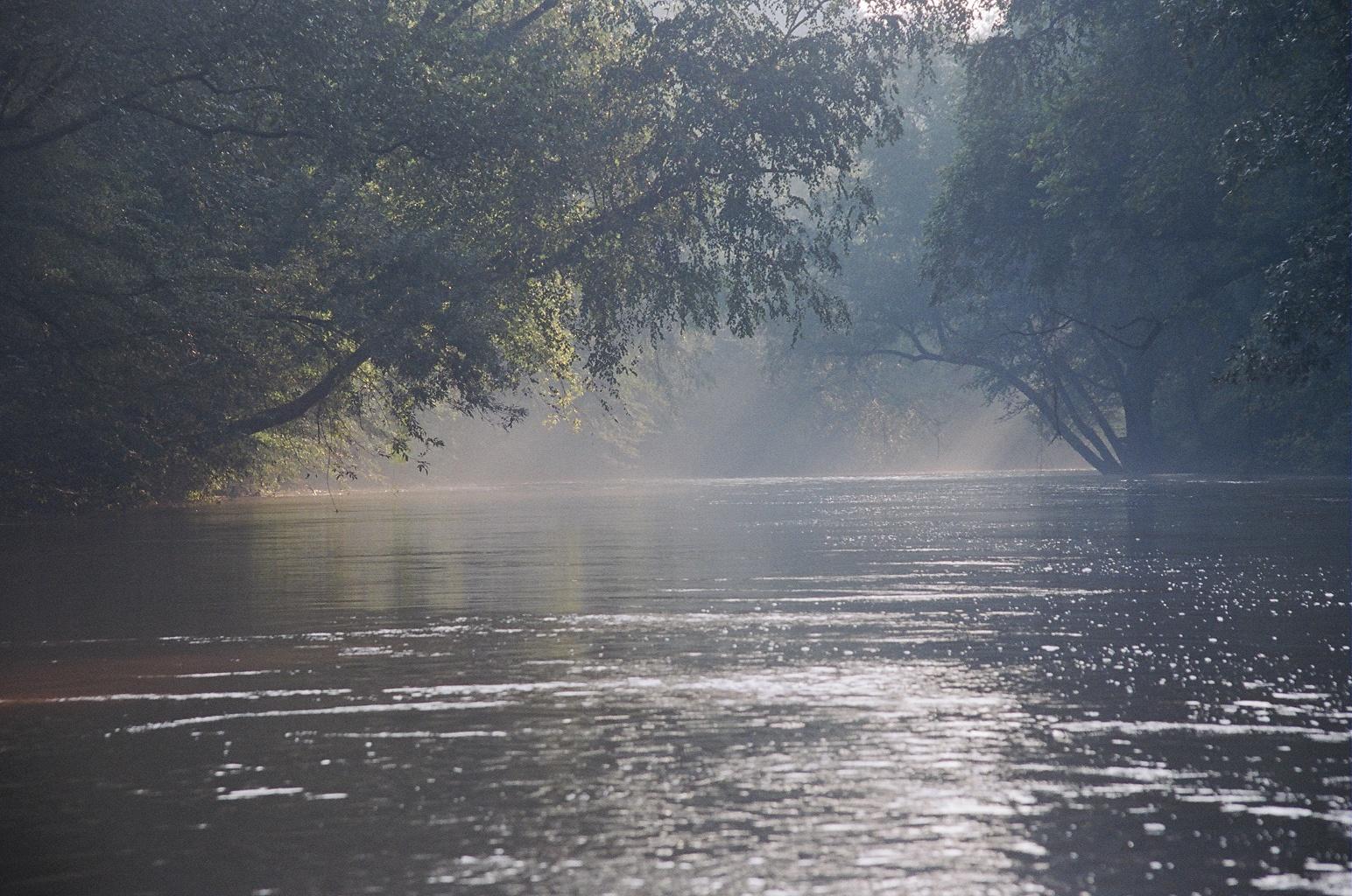 Etowah River etowahscenicriver.org