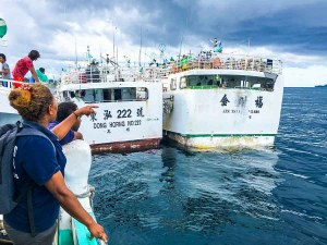 Longline tuna fishing vessels in harbour in Solomon Islands. Fisheries officer in foreground. Photo: Francisco Blaha.