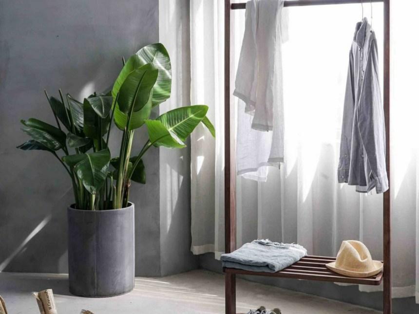 Clean-closet