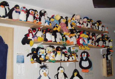 museo-pingüinos