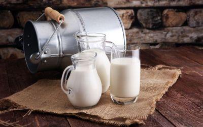 Banyak Manfaat, Kenali Kandungan Nutrisi Susu Kambing