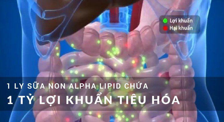 1 ly sữa non alpha lipid chứa 1 tỷ lợi khuẩn tiêu hóa