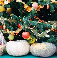 Karácsonyi sütőtök dekoráció