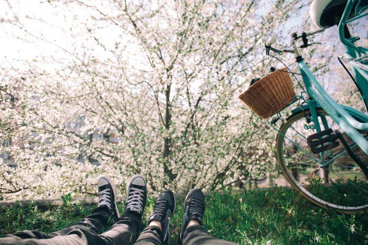 Kuvituskuva, kaksi henkilöä makaamassa puun alla kesäisenä päivänä.